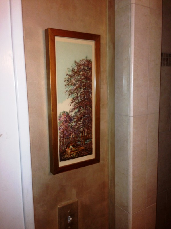 ...even snuck one in on a narrow strip of wall next to the shower...