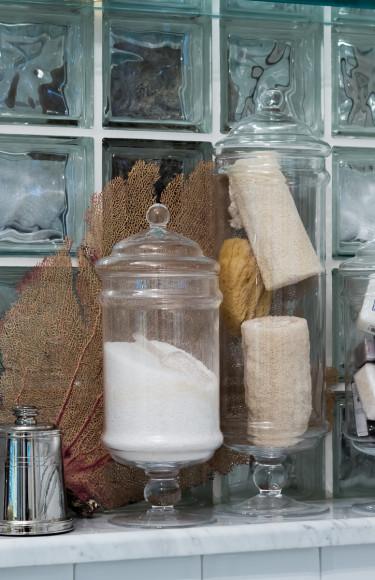 Fan coral sea sponges bathroom vignette