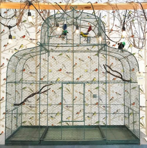 Schumacher bird wallpaper large birdcage