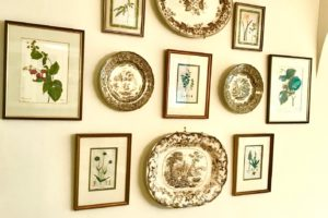 botanical prints antique plates gallery wall