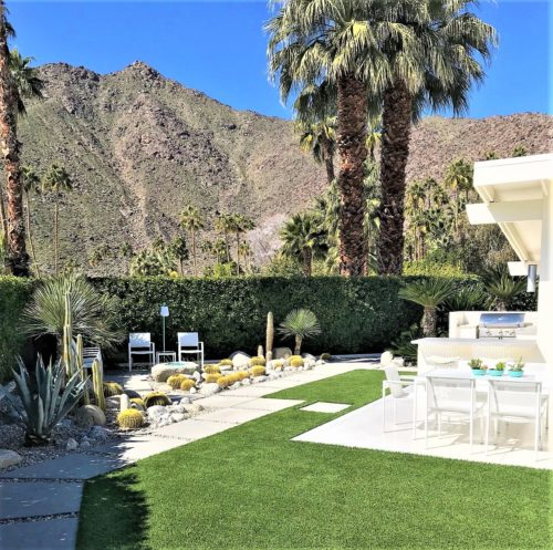 modern desert landscape backyard